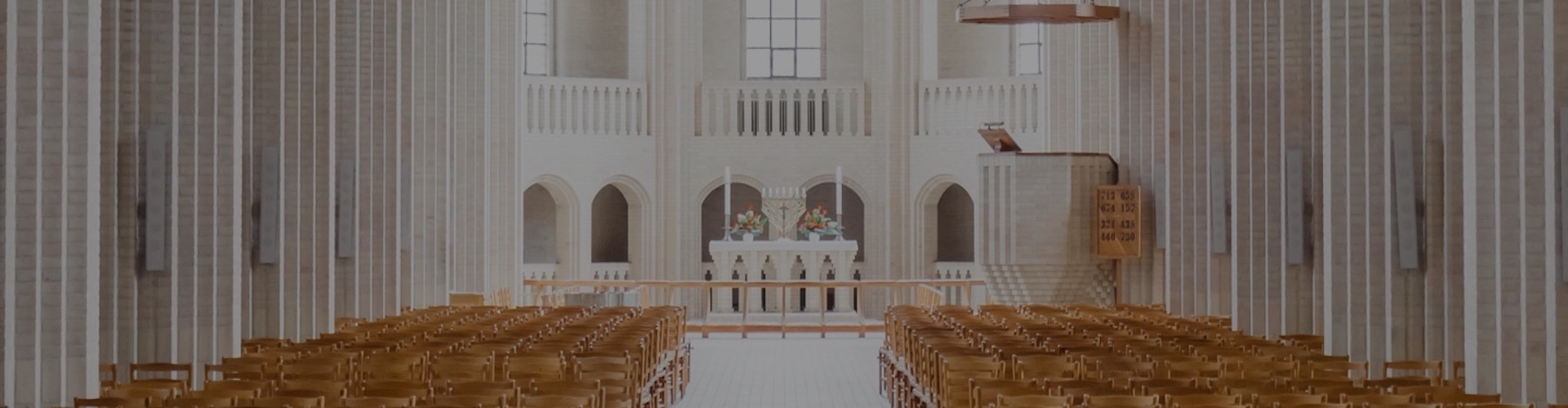 Nrsv Catholic Edition Bible Press New Revised Standard Version Pdf Free Download