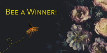 How the World Looks to a Bee Giveaway!