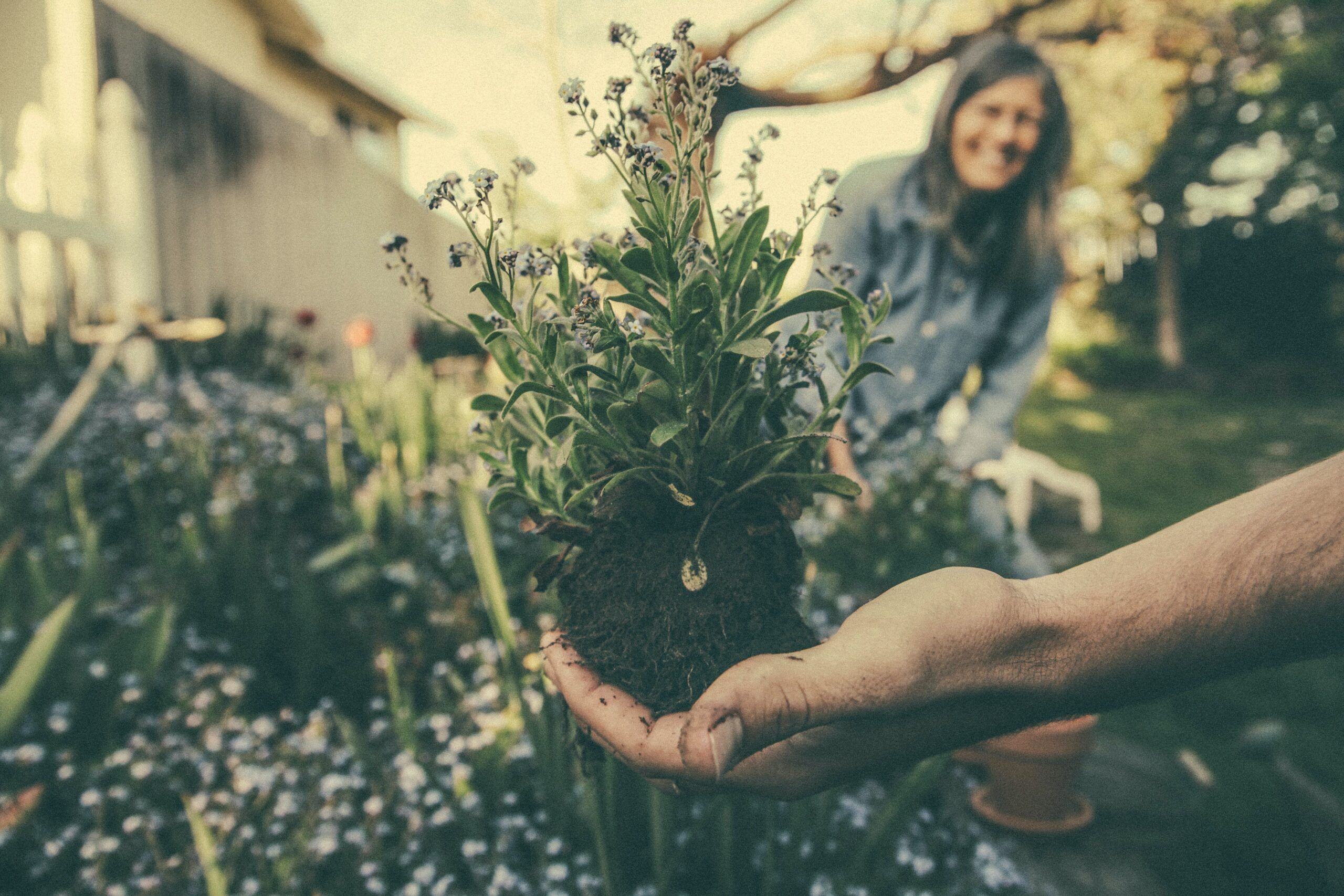 Growing Good: A Beginner's Guide to Cultivating Caring Communities