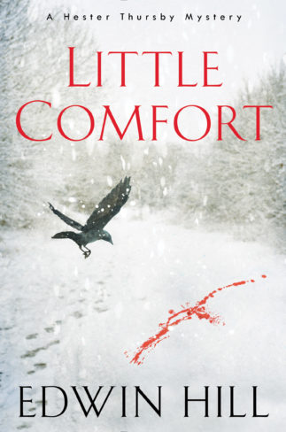 Little Comfort: A Hester Thursby Mystery by Edwin Hill