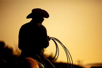 Stacy Finz's Favorite Cowboy Romances