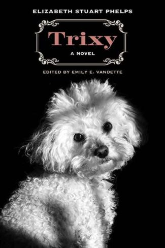 "Excerpt from ""Trixy: A Novel"" by Elizabeth Stuart Phelps"