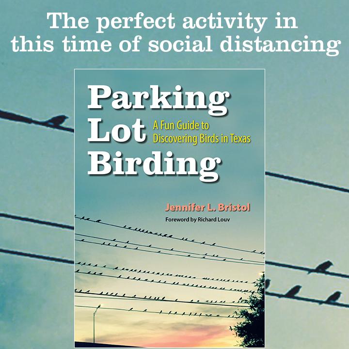 Parking Lot Birding rotating graphic