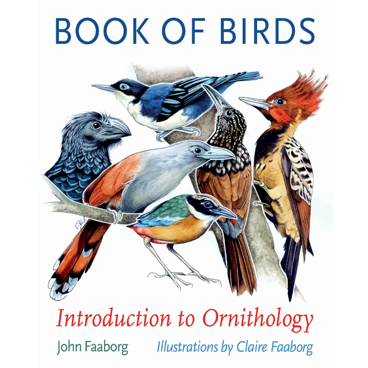 Promotional image for Book of Birds