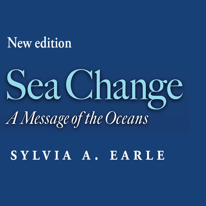 Promotional banner for Sea Change