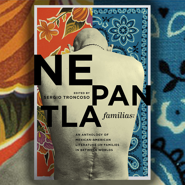 Promotional banner for Nepantla Familias