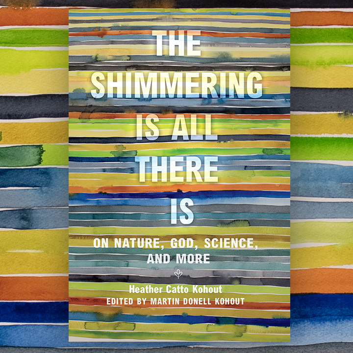 Promotional image for The Shimmering Is All There Is