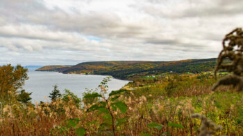 Layers of Decline: Deindustrialization and Its Impacts in Post-Industrial Cape Breton