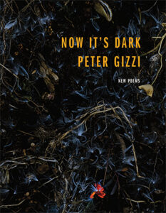 front cover of Now It's Dark by Peter Gizzi